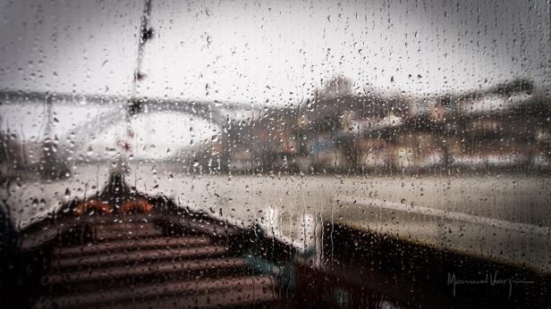 20160305_0096_uma bela viagem à chuva.jpg